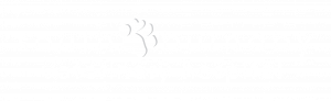 logo of south burnaby veterinary hospital in burnaby british columbia